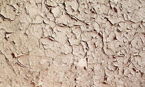 Brown crack mud texture