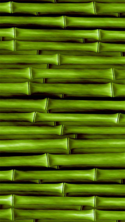 iPhone 5 Wallpaper Bamboo 01