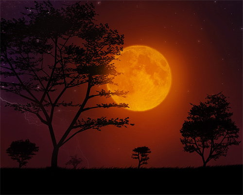 Bright orange cool moon wallpaper