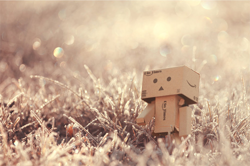 Vintage danbo photography cute