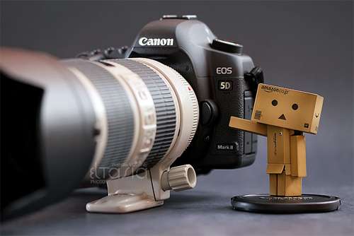 Camera canon danbo photography cute