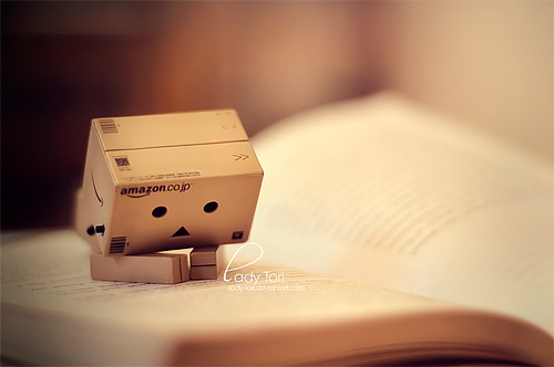 Reading book danbo photography cute
