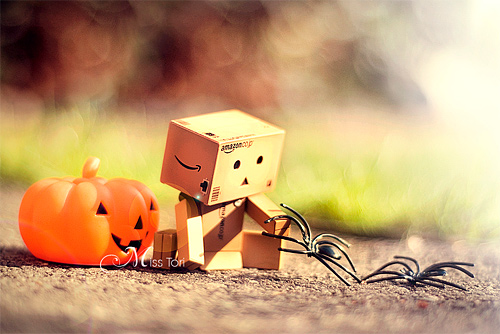 Holloween spider pumpkin danbo photography cute