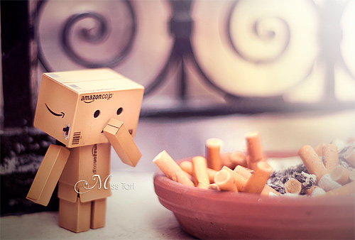 Cigarette danbo photography cute