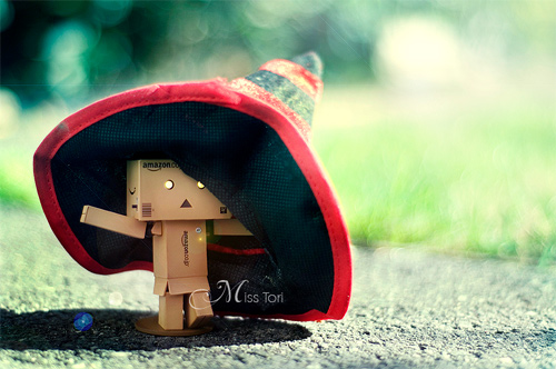 danbo photography cute hat big witch