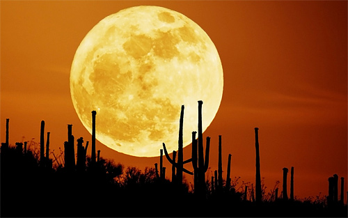 Rising red orange cool moon wallpaper