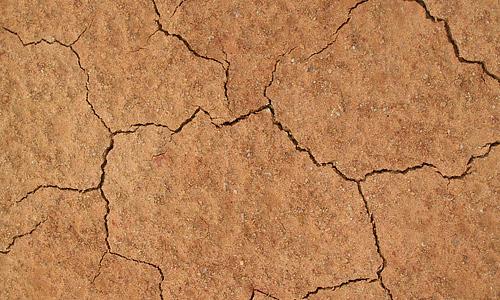 Brown dry crack mud texture