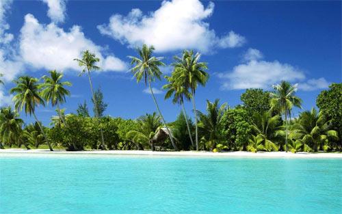 Tropical Island_72580 Wallpaper