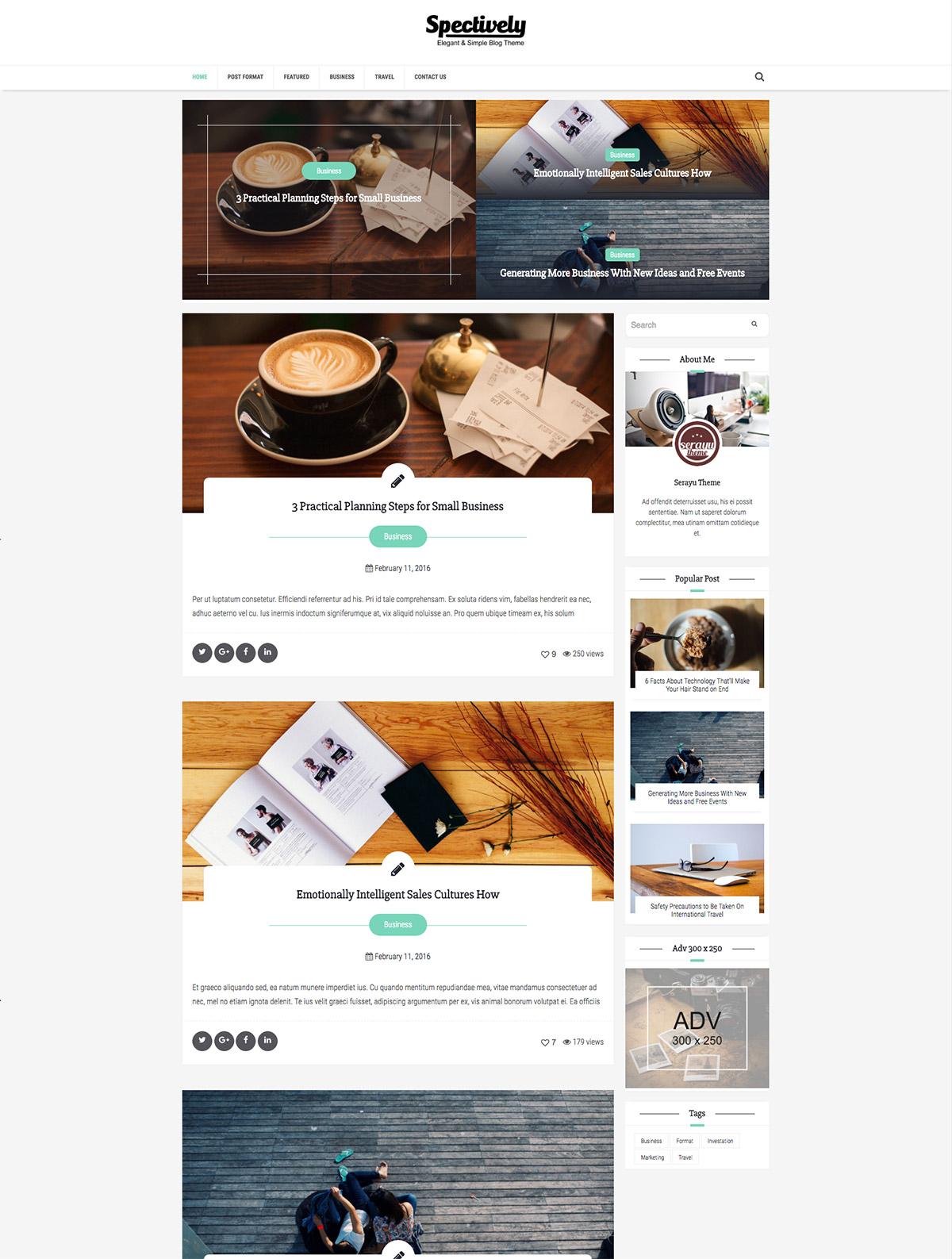 elegant blog theme
