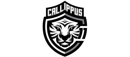 Soccer white tiger logo