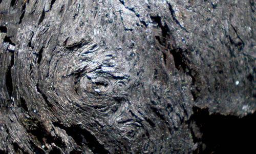 Charred Wood Texture 4