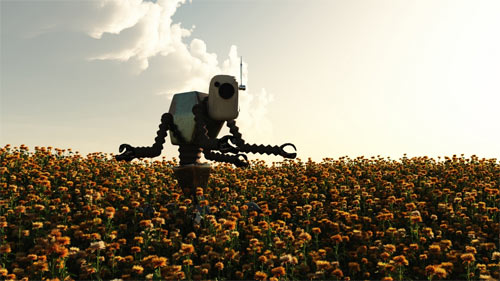 Field of Robot wallpapers