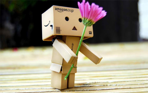 Danbo with Flower_79531 Wallpaper
