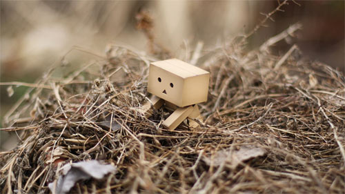 Danbo March wallpapers