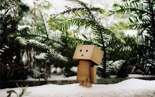 Danbo in snow wallpaper