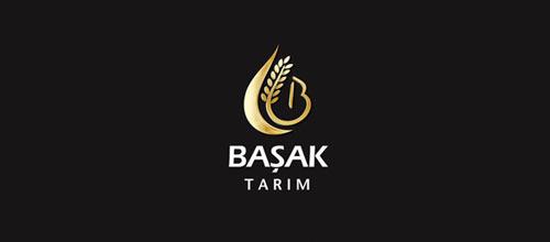 Basak Tarim logo