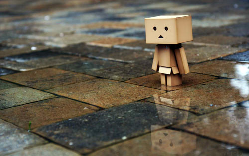 Danbo In The Street wallpaper