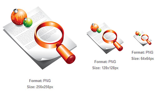 Document Search Xmas icon