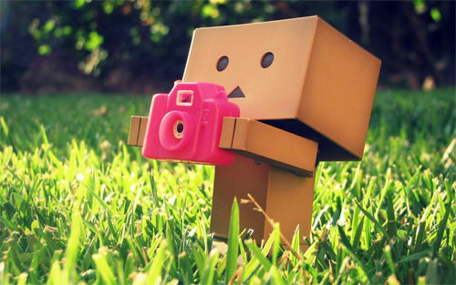Danbo the photographer_94228 Wallpaper