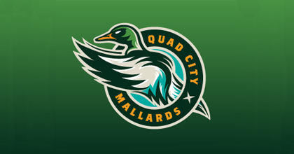 Hockey ducks logo design