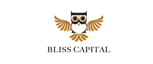 Financial finance typography owl logos