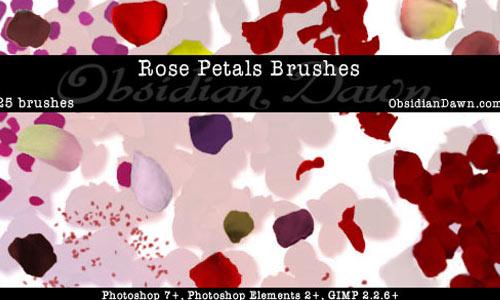 Rose Petal Photoshop Brushes
