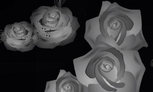 Rose Corners