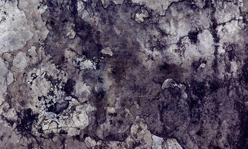 Mossy Rock Texture