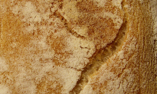 Tasty free bread textures download