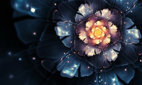 Beautiful dark flowers hi resolution wallpapers