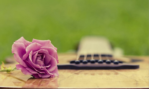 Romantic guitar flowers hi resolution wallpapers