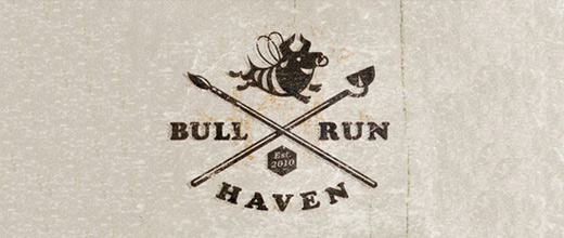 Haven bull logo designs