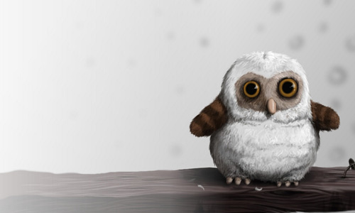 35 Lovable Collection Of Owl Wallpapers