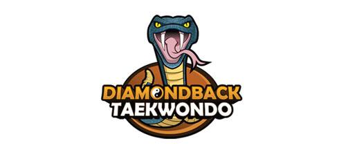 Diamondback Taekwondo