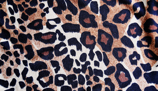 Fabric leopard skin texture free download hi res high resolution