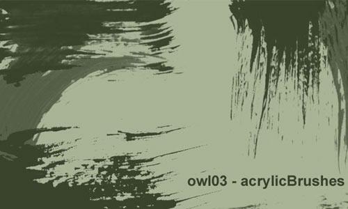 owl03 - acrylicBrushes