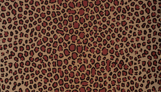 Pattern leopard skin texture free download hi res high resolution