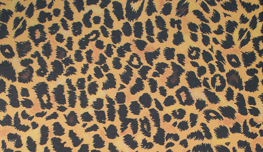 Yellow orange leopard skin texture free download hi res high resolution