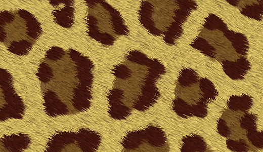 Paper fur leopard skin texture free download hi res high resolution