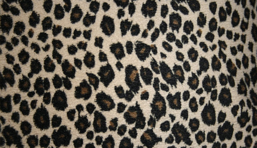 Fur leopard skin texture free download hi res high resolution