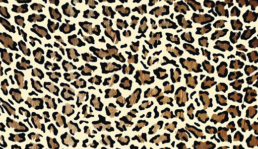 Cool leopard skin texture free download hi res high resolution