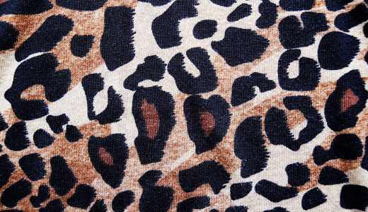 Nice print leopard skin texture free download hi res high resolution