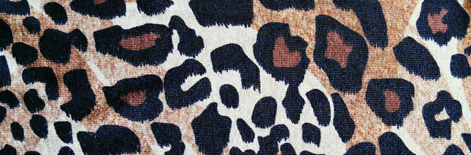 A Collection of 33 Pleasant Leopard Skin-Like Textures