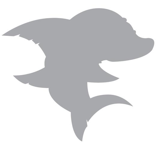 sharks-011