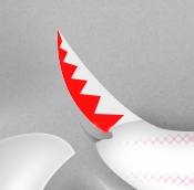 sharks-17
