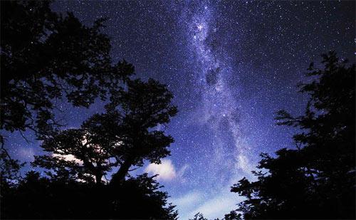 Patagonian Night