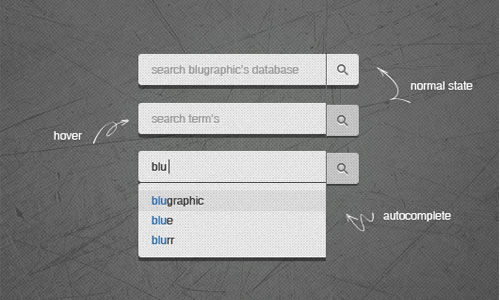 3 State Push Search Field (Psd)