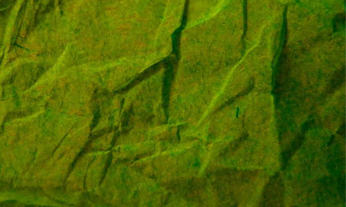 Tissue Paper 2 texture