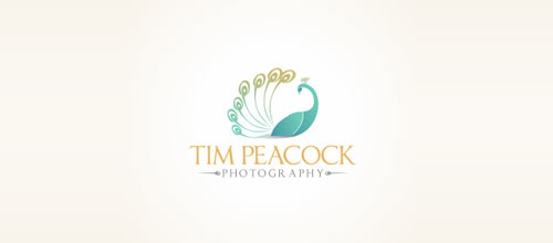 Tim Peacock Photography logo