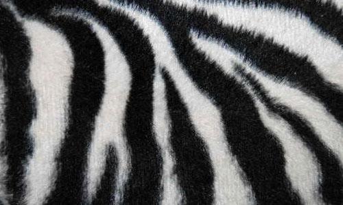 Pattern 008